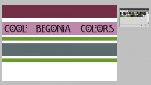 BegoniasCoolColors